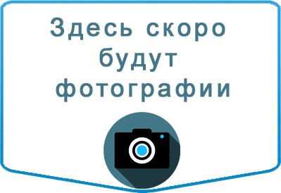 Заказ автобуса Hyundai H1 (Starex) в Казани
