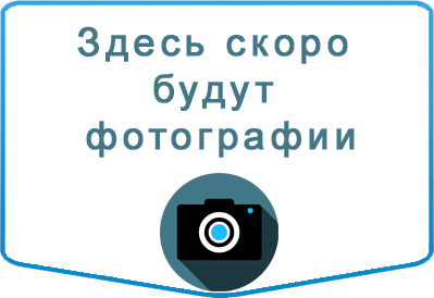 Заказ автобуса Ford Транзит в Казани
